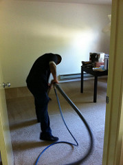 Carpet Cleaning professional in apartment